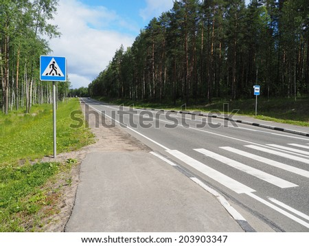 crosswalk in the forest