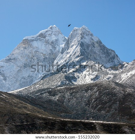 Crow against the peaks of the Pokalde (5806 m) and Mehra Peak (5820 m) from the village of Dingboche in the valley Chhukhung - Nepal, Himalayas - stock photo