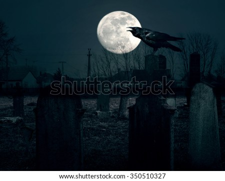 Crow silhouette in moonlight