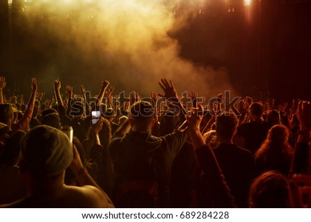 Crowd at concert at summer music festival