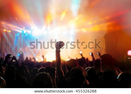 Crowd enjoying festival and live music concerts