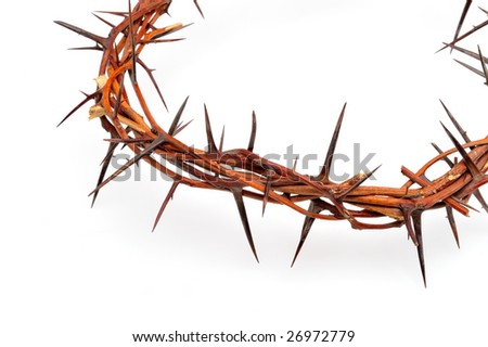 crown made of thorns isolated on white background - stock photo