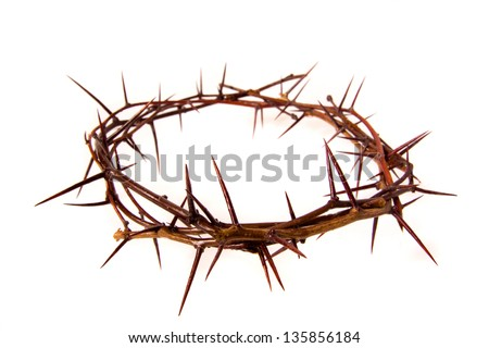 Crown of thorns isolated on white background, copy space. Christian concept of suffering.