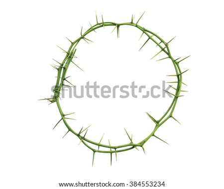 Crown of thorns isolated on white background. This has clipping path. - stock photo
