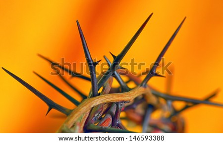 Crown of Thorns on orange background,  isolated - stock photo