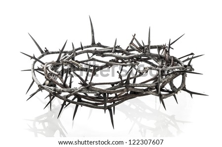 Crown Of Thorns Stock Images, Royalty-Free Images & Vectors ...