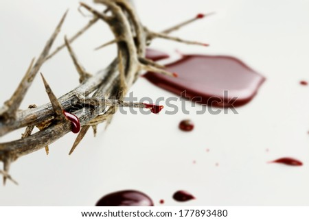 Crown of thorns with drops of blood over white background.