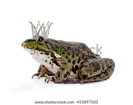 crown the frog isolated on a white background