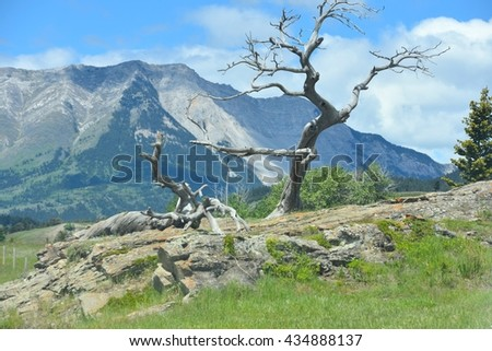Crowsnest Pass in Alberta, Canada