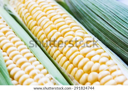 crude corn with green leafes