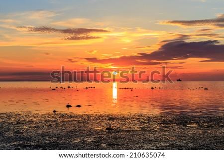 Cruise liner ship in sunset in sea in Tallinn, Estonia - stock photo