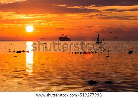 Cruise liner ship in sunset in sea in Tallinn, Estonia