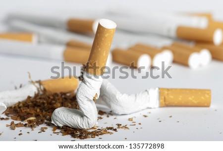 Crumpled cigarette. Shite isolated studio shot - stock photo