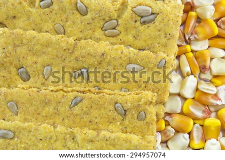 Crunchy oat thins with sunflower surrounded with dried corn grains - stock photo