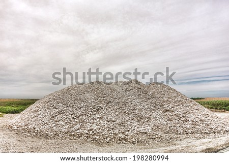 Coastal landscaping stock photos royalty free images for Crushed oyster shells for landscaping