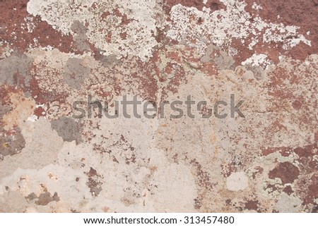 Crustose Type Lichens Growing on Red Rock - stock photo