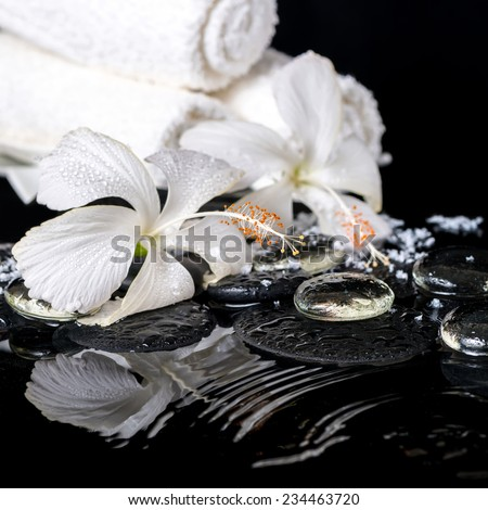 cryogenic spa still life of delicate white hibiscus, zen stones with drops, snow, ice and towels on ripple water, closeup - stock photo