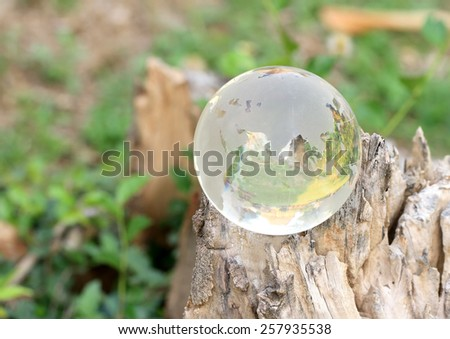 Crystal World Asia zone with reflections Thailand Ruins on stump. - stock photo