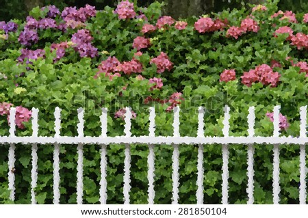 Crystallized abstract of white picket fence in front of luxuriant bushes with green leaves and pink chrysanthemums in front yard garden, summer in New England