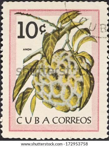 CUBA - CIRCA 1963: A postage stamp printed in the Cuba shows tropical fruit - anon (Sugar-apple), circa 1963 - stock photo