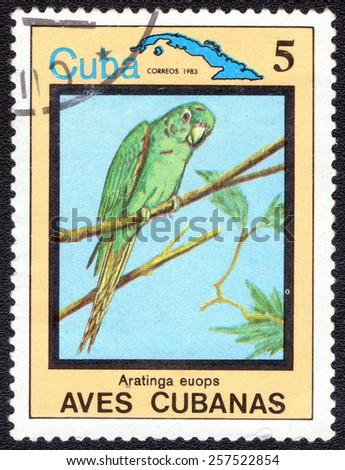 """CUBA - CIRCA 1983:A postage stamp shows Aratinga euops, from series """"Cuban Birds"""", circa 1983 - stock photo"""