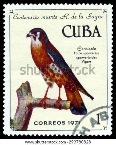 CUBA - CIRCA 1971: A stamp printed by Cuba, shows bird American Kestrel, Falco sparverius, , circa 1971 - stock photo