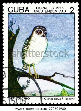 CUBA - CIRCA 1975: A stamp printed by Cuba, shows  bird  Gymnoglaux Lawrenci, Indigonous Birds, circa 1975  - stock photo