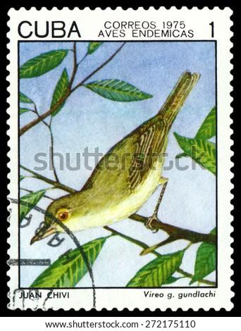 CUBA - CIRCA 1975: A stamp printed by Cuba, shows  bird  Vireo Gundlachi, Indigonous Birds, circa 1975  - stock photo
