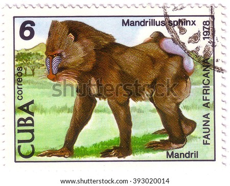 CUBA - CIRCA 1978: A stamp printed by Cuba shows fauna Africa the Mandrill - Mandrillus sphinx, stamp is from the series, circa 1978 - stock photo