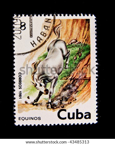 CUBA - CIRCA 1981: A stamp printed by Cuba shows the horse, circa 1981. Series, 7 stamps.