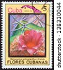 "CUBA - CIRCA 1983: A stamp printed in Cuba from the ""Cuban flowers"" issue shows Melocactus actinacanthus Areces, circa 1983. - stock photo"