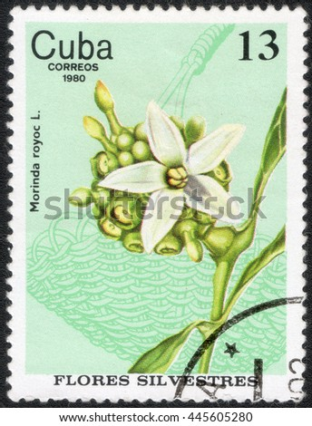 "CUBA  - CIRCA 1980: A stamp printed in Cuba shows a series of images of ""Medicinal berries"", circa 1980"