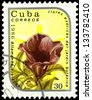 "CUBA - CIRCA 1986: A stamp printed in Cuba shows Allamanda violacea Flower, with the same inscription, from the series ""Exotic Flowers from botanical garden"", circa 1986 - stock photo"