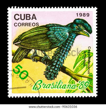 CUBA - CIRCA 1989: A stamp printed in Cuba shows Amazonian Umbrellabird - Cephalopterus ornatus, circa 1989