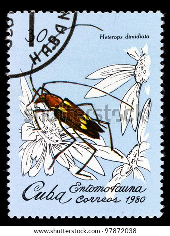 "CUBA - CIRCA 1980: A Stamp printed in Cuba shows an image of an Insect with the inscription ""Heterops dimidiata"", from the series ""Insects"", circa 1980"