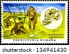 "CUBA - CIRCA 1997: A stamp printed in Cuba, shows ancient man and his skull, with inscription ""Australopithecus"", from the series ""Hominids"", circa 1997 - stock photo"