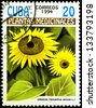 "CUBA - CIRCA 1994: A stamp printed in Cuba shows Helianthus annuus plant, with the same inscription, from the series ""Medicinal plants"", circa 1994 - stock photo"