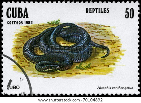 """CUBA - CIRCA 1982: A Stamp printed in CUBA shows the image of a Snake with the description """"Alsophis cantherigerus"""" from the series """"Reptiles"""", circa 1982 - stock photo"""