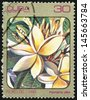 CUBA - CIRCA 1984: post stamp printed in Cuba shows image of plumeria alba (plumieria) from Caribbean flowers series, Scott catalog 2691 A730 30c, circa 1984 - stock photo