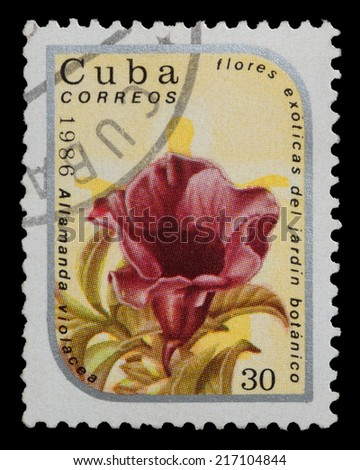 CUBA - CIRCA 1986: stamp printed in Cuba, shows image allamanda from series exotic flowers in botanical gardens , circa 1986 - stock photo