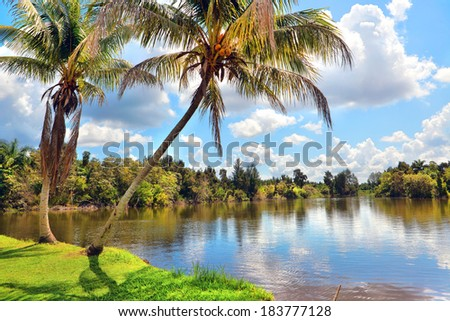 cuban country landscape  - stock photo