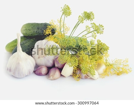 cucumber,garlic,blossoming dill and horseradish for preserve - stock photo