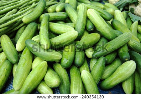 Cucumbers are sold in local markets. - stock photo