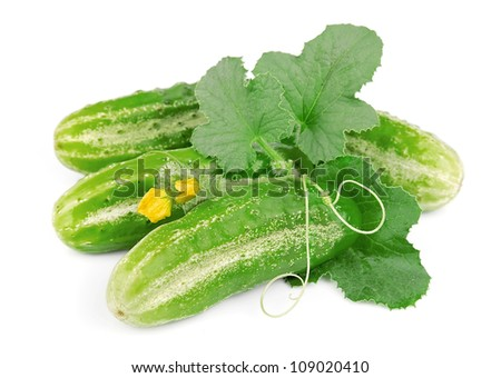 Cucumbers with leaves on white background