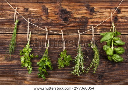 Culinary herbs. Aromatic herbs, basil, coriander, parsley, chive, mint and rosemary hanging on string on old country style wooden background.  - stock photo