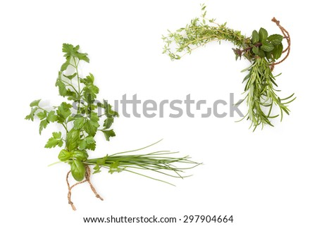 Culinary herbs background with copy space. Fresh basil, cilantro, chive, parsley and mint herbs isolated on white background, top view. Modern, minimal image style. - stock photo