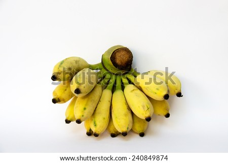 Cultivated Banana : For Thai ingredient dessert recipes such as glutinous rice steamed in banana leaf, banana in coconut milk etc. - stock photo