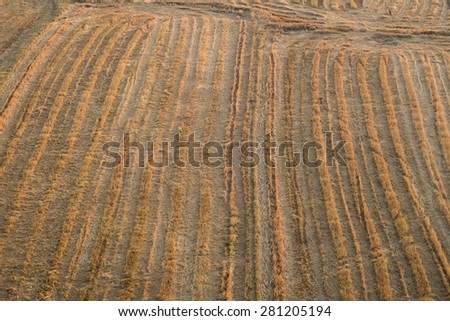 Cultivated farmland, ready to plant - stock photo