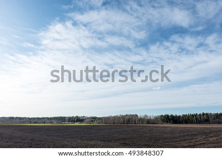 Cultivated field in early spring day in countryside