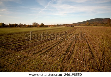 cultivated field on a sunny day in countryside - stock photo